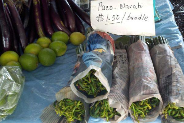 paco warabi bundles at the farmers market