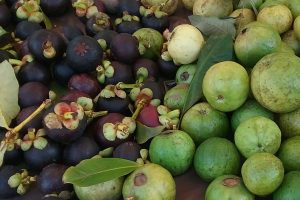 mangosteen and pink guava at the farmers market