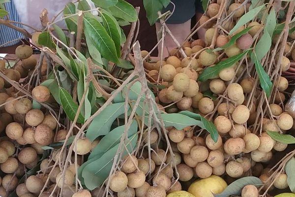 longan at the farmers market