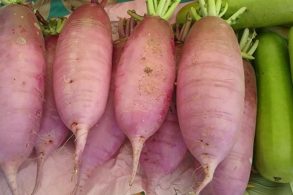 large pink radishes on the farmers market table