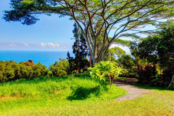 Tropical Garden Of Eden, Maui Hawaii