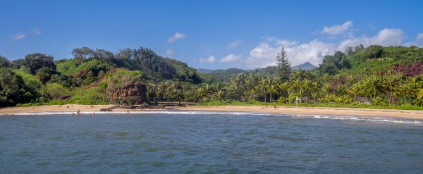 Panoramic view of McBryde Gardens on Kauai