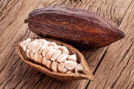 ripe cacao pod and raw cocoa beans