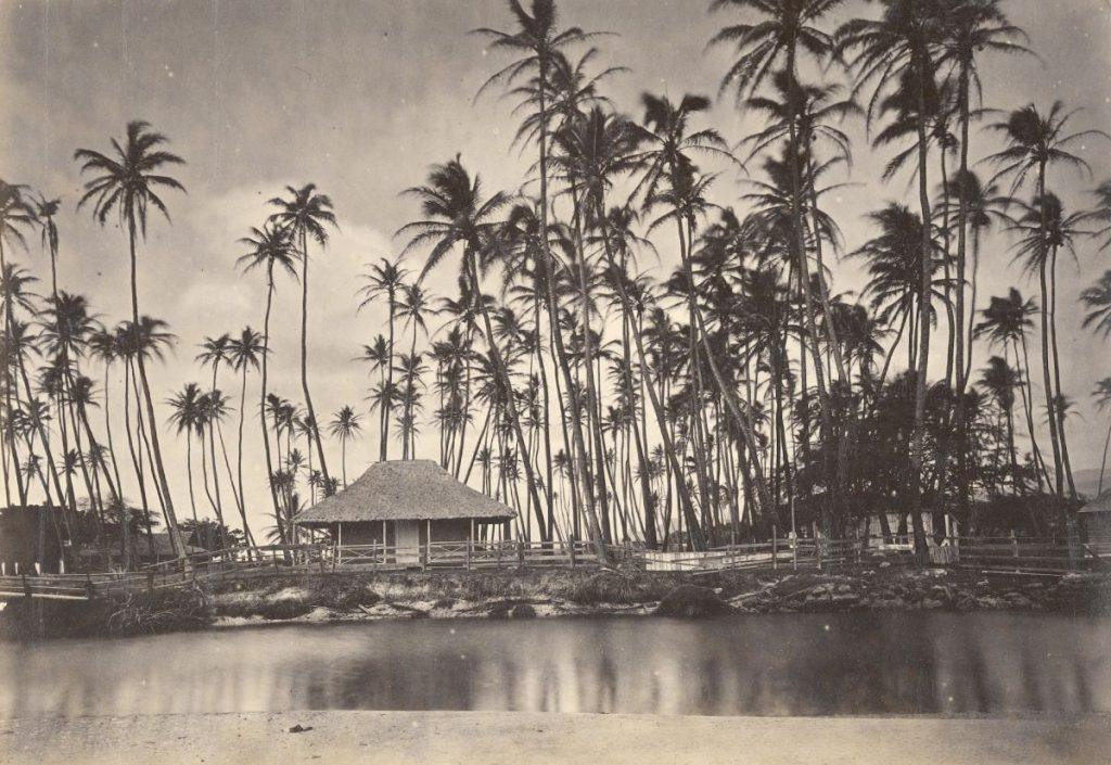 Kamehameha V's summer residence at Helumoa aka The Royal Grove circa 1863 or 1880s