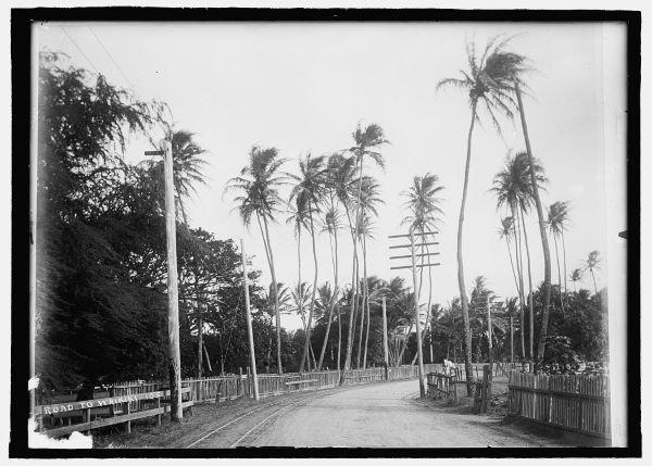 Road to Waikiki between 1908-1919