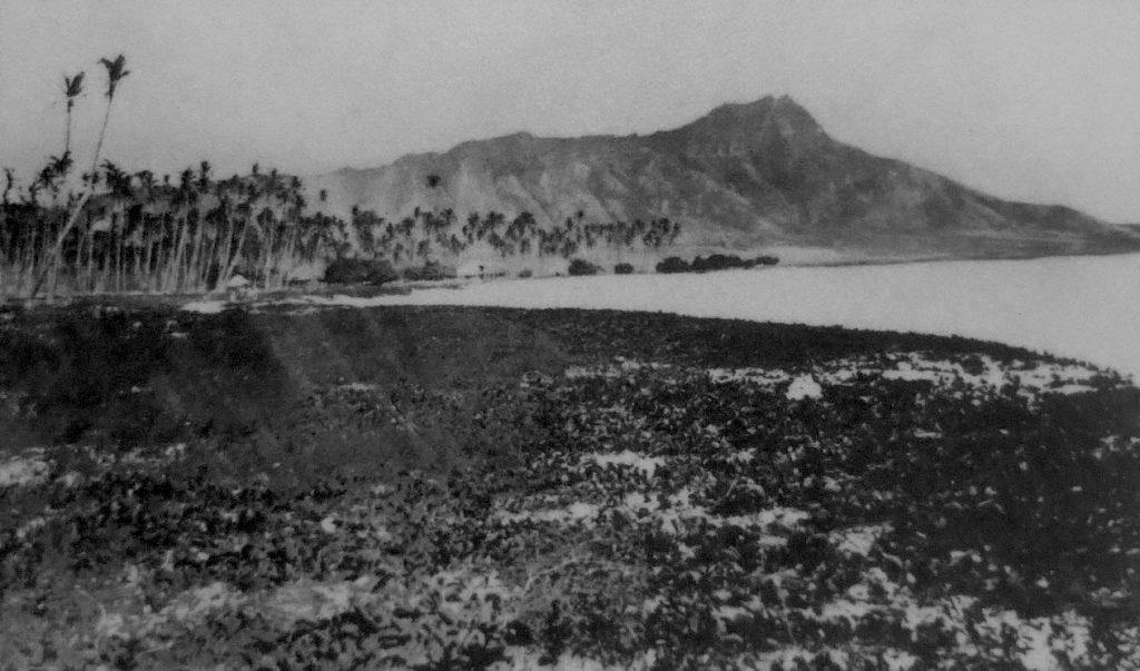 Waikiki shore and Diamond Head circa 1800s